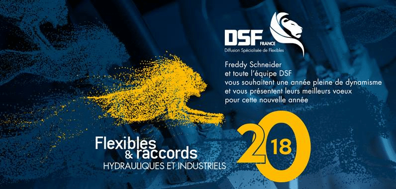 Vœux DSF 2018